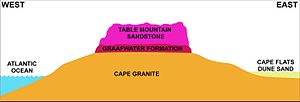 "Table Mountain Sandstone (Geological Formation) - Schematic geological west-east cross section through Cape Peninsula, based on a section through the Back Table just south of Table Mountain. Not to scale. On the Peninsula the basement layer consists in the main of Cape Granite. The Table Mountain Sandstone (in the same colour as in the diagram on the left) forms the steep escarpments that surround the approximately 5 km-wide central plateau. It consists of the layer below the ""Pakhuis diamictite"", of which there is only a trace at the highest point on Table Mountain at 1085 m above sea level. The lowermost formation of the Table Mountain Group is the ""Graafwater Formation"", which rests unconformally on the Cape Granite base, as opposed to the Malmesbury Formation base in most of the rest of the extent of Cape Supergroup in the Western Cape (see illustration above, on the left). Kirstenbosch Botanical Gardens, and all the major wines estates on the Peninsula are situated on the fertile (weathered) granite slopes on the east side of the mountain. The soils derived from Table Mountain Sandstone are very poor in nutrition."