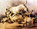 George Morland - Fighting Dogs.jpg