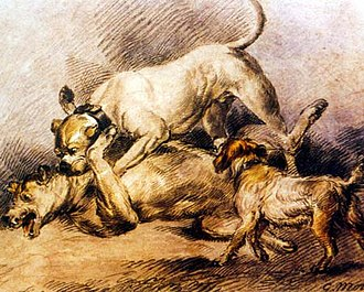Dog fighting - Fighting Dogs by George Morland, circa 1800