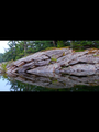 Georgian Bay reflection.png