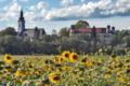 Gleinstaetten castle+church.png
