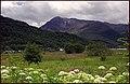 Glen Coe. - panoramio (10).jpg