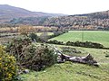 Glenmalure - geograph.org.uk - 627453.jpg