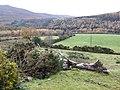 Glenmalure - geograph.org.uk - 627453.jpg
