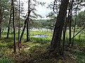 Gmina Piecki, Poland - panoramio (95).jpg