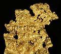 Gold-cat17b.jpg