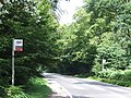 Golding's Hill, Epping Forest - geograph.org.uk - 2523514.jpg