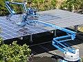 Googleplex Solar panels.jpg