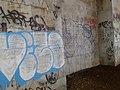 Graffiti under the bridge, Theodore Roosevelt Island.jpg