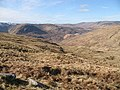 Grassy western slopes of Beinn na Cille - geograph.org.uk - 727943.jpg