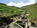 Grindsbrook Clough - geograph.org.uk - 267627.jpg