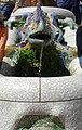 Guell Park's salamander 2.jpg