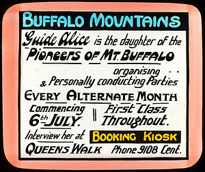 Alice Manfield - A tourist advertisement for Guide Alice from the early 1900s