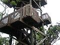 Gumbo-limbo-tower.jpg