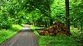 Gut Holz - panoramio.jpg