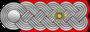 HH-SS-Obersturmbannfuhrer-Shoulder Strap.png