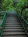 HK 北角 North Point 香花徑 Aroma Walk rain 08 outside stairs Dec-2013.JPG