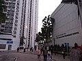 HK Shatin 沙田第一城 City One evening February 2021 SSG 05.jpg