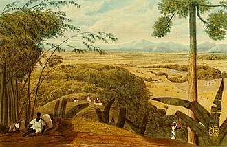 Fulke Rose - St. Thomas in the Vale from Mount Diablo by James Hakewill from A Picturesque Tour of the Island of Jamaica, 1820s.