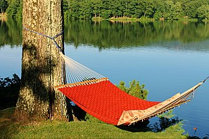 Hammock - Hammock with a lakeside view