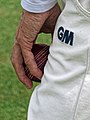 Hand with cricket ball, Bishop's Stortford Cricket Club, Hertfordshire 1.jpg