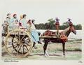Handkolorerat fotografi på siciliansk vagn - Hallwylska museet - 104084.tif