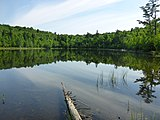Harris Pond - panoramio (1).jpg