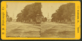 Harvard College, Cambridge, Mass, by U.S. Stereoscopic Co..png
