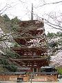 Hasedera (Sakurai) 5jyunoto1.jpg