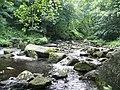 Hebden Water , Wadsworth - geograph.org.uk - 1391296.jpg