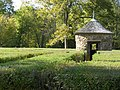 Hedges PA260085.jpg