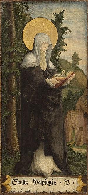 Saint Walpurga - Painting by the Master of Meßkirch, c. 1535–40.
