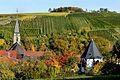 Herbstlicher Spaziergang durch die Becksteiner Weingärten. 06.jpg