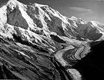 Herron Glacier, mountain glacier, August 8, 1957 (GLACIERS 5146).jpg