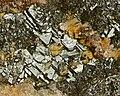 Hetaerolite, Zincite-274438.jpg