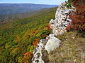 High-point-north-fork-mountain - West Virginia - ForestWander.jpg