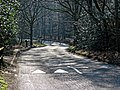High Beach road through Epping Forest, Essex, England.jpg