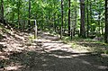 Hiking trail fence post bridge trees woods summer Douthat State Park (31502136506).jpg