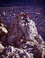 Hochstaufen-22-Wanderer auf Felsspitze-1987-gje.jpg