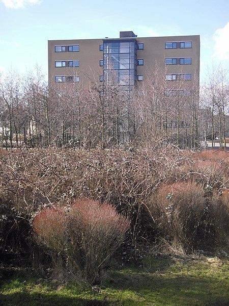 File:Hof van Delftpark - Delft - 2010 - panoramio - StevenL.jpg