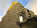 Hore Abbey, Caiseal, Éire - 45671388865.jpg