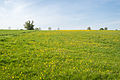 Horn-Bad Meinberg - 2015-05-10 - LSG-4118-0001 (14).jpg