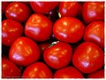 Hothouse Tomatoes - Flickr - pinemikey.jpg
