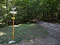 Hradný vrch Veľký Šariš 19 Slovakia3.jpg