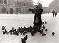 Hranjenje golobov na Slomškovem trgu 1956.jpg