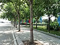 Huangdao, Qingdao, Shandong, China - panoramio (994).jpg