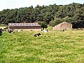 Hunter Hill Farm - geograph.org.uk - 38283.jpg