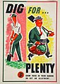 INF3-97 Food Production Dig for Plenty Artist BAN.jpg