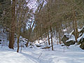 Ice-Glen-northern-entrance (3).jpg