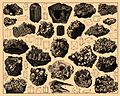 Iconographic Encyclopedia of Science, Literature and Art 050.jpg